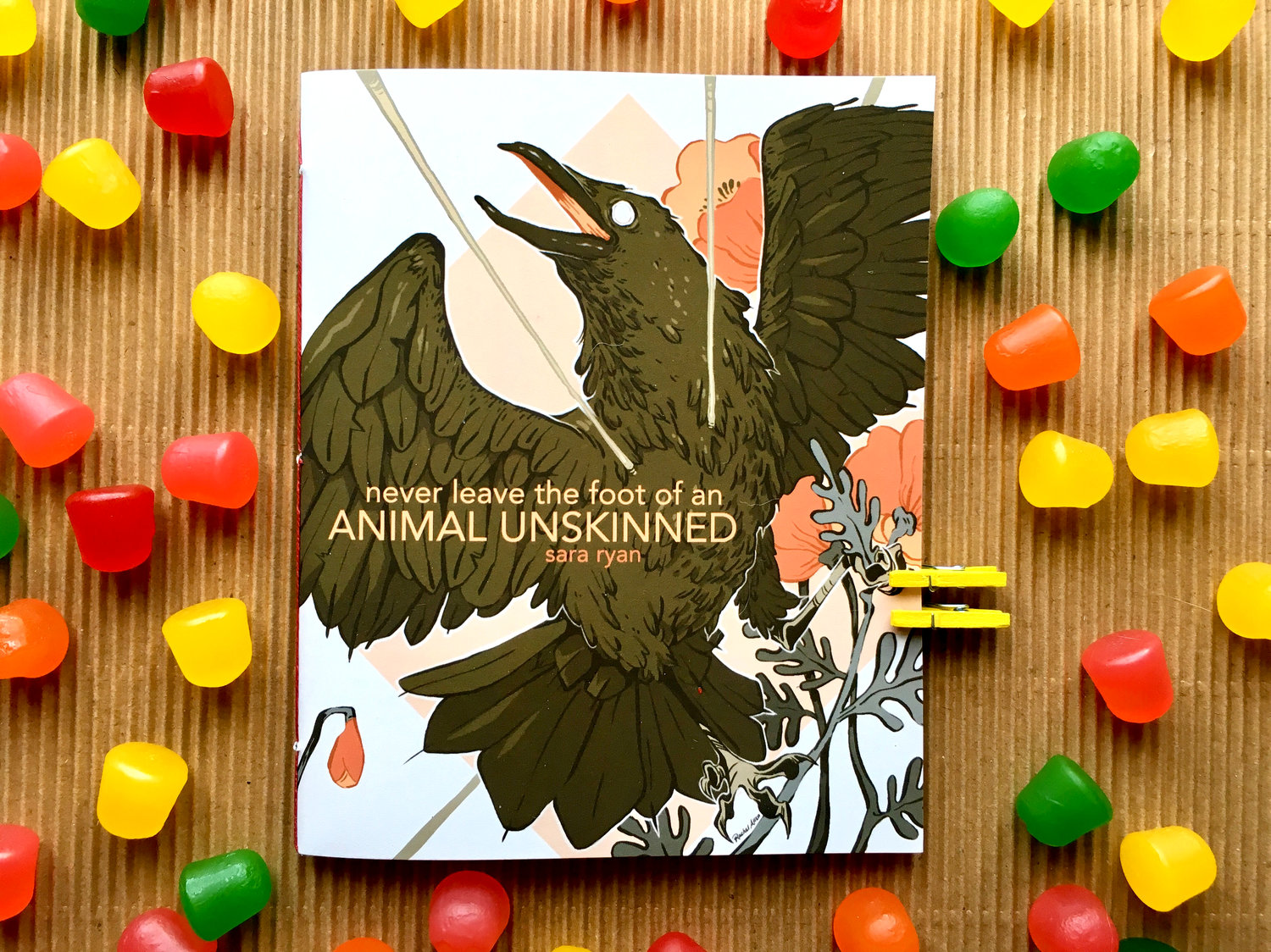 Never Leave the Foot of an Animal Unskinned by Sara Ryan - available from Porkbelly Press